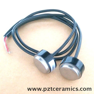Ultrasonic Flow Sensor